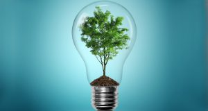 alphagamma green talents competition for young researchers 2015
