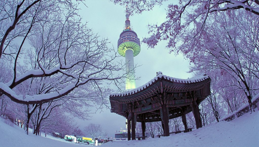 alphagamma winter abroad at yonsei opportunities