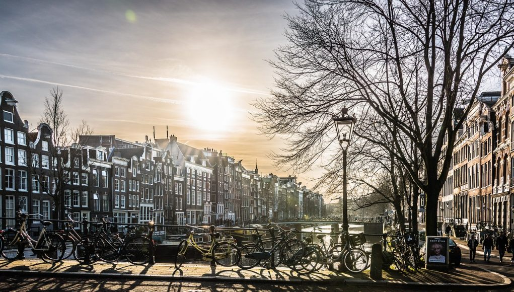 alphagamma Amsterdam Affiliate Conference 2017 opportunities