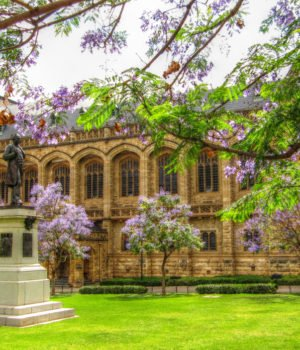 alphagamma Adelaide Scholarships International 2017 opportunities